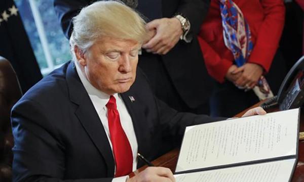 Vì sao thẩm phán Mỹ dừng lệnh hạn chế nhập cư của Trump? - ảnh 2