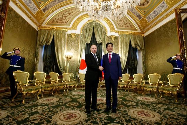 Lãnh đạo Nga - Nhật tìm kiếm cơ hội hợp tác tại đảo tranh chấp - ảnh 4