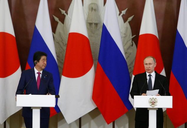 Lãnh đạo Nga - Nhật tìm kiếm cơ hội hợp tác tại đảo tranh chấp - ảnh 5