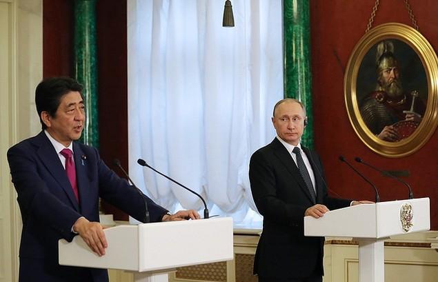 Lãnh đạo Nga - Nhật tìm kiếm cơ hội hợp tác tại đảo tranh chấp - ảnh 6