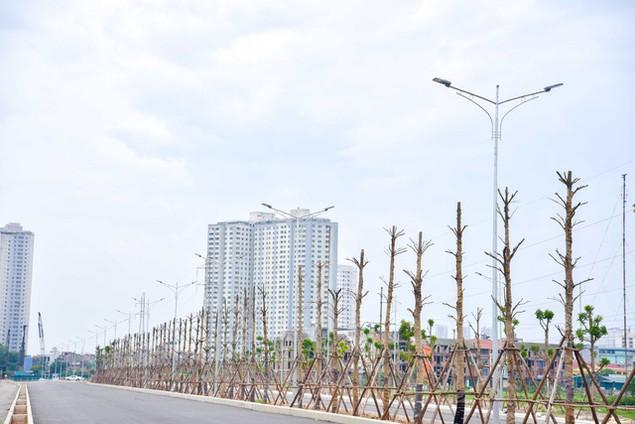 Toàn cảnh tuyến đường nghìn tỷ đang gấp rút hoàn thành tại Hà Nội - ảnh 3