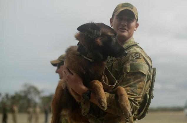 Mỹ - Australia rầm rộ tập trận quân sự chung lớn nhất - ảnh 9