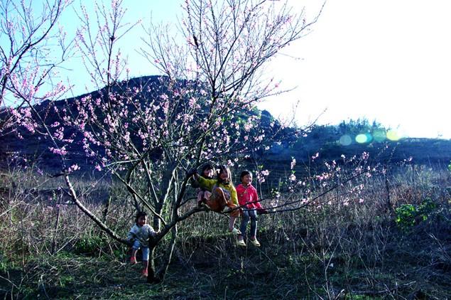 Hương sắc mùa xuân - ảnh 3