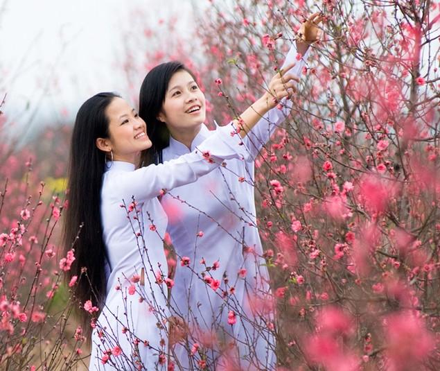 Hương sắc mùa xuân - ảnh 5